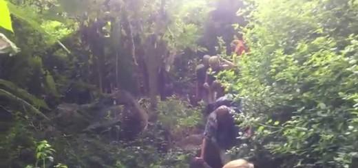 Santiago: Wanderung von Rui Vaz zum Botanischen Garten